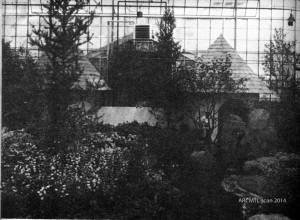 Jardins Botanique 1974 Botanical Gardens